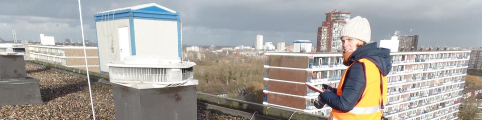 Watersnip zoekt het hogerop in Rotterdam