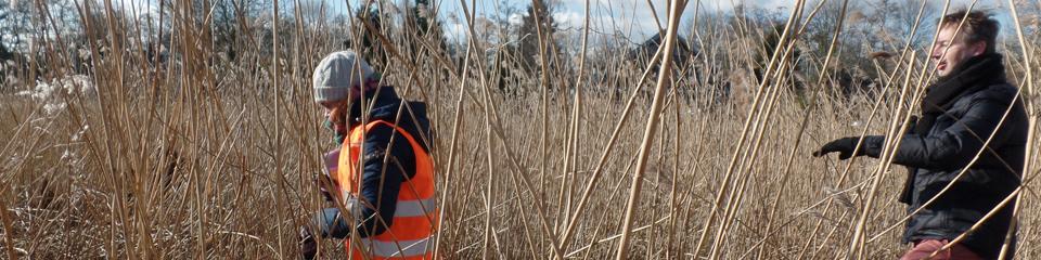 Voorbereidingen voor ecologische woonwijk Steupel van start