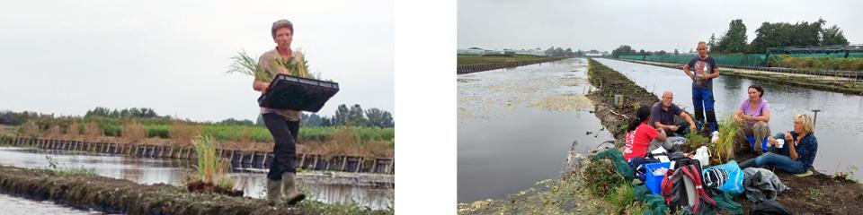 Avontuurlijke inplantactie legakkers ecologische waterberging
