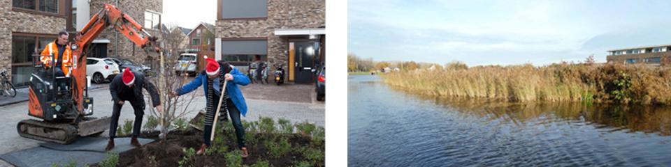 Natuurinclusief bouwen aan de Breevaart in Reeuwijk-Brug