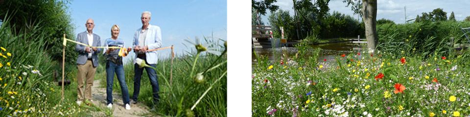 Wethouders openen bijenberm in Reeuwijkse plassen